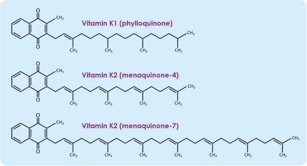 Vitamin-k2-bulvit