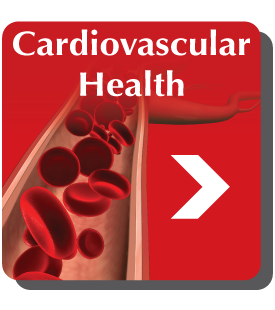 nattoMK-7 promotes healthy arteries